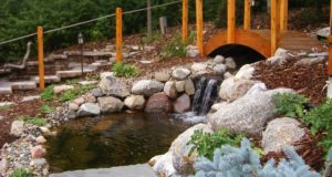 Custom bridge with wading pond and waterfall in Bloomington, MN