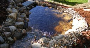 Bubbling brook and pond in Bloomington, MN