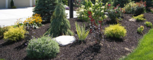 Planting of a completed project